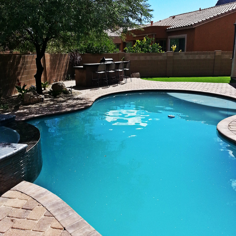 Custom pool photo gallery award winning pools by for Pool fill in mesa az